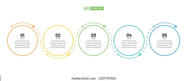 Thin line flat infographic design template and number options. Timeline with 5 options, steps or process. Vector business template for presentation.