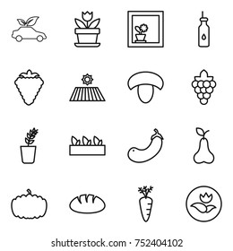 thin line icon set : eco car, flower, in window, vegetable oil, berry, field, mushroom, grape, seedling, eggplant, pear, pumpkin, bread, carrot, ecology