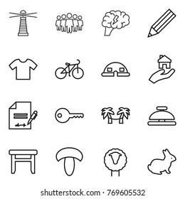 Thin line icon set : lighthouse, team, brain, pencil, t shirt, bike, dome house, real estate, inventory, key, palm hammock, service bell, stool, mushroom, sheep, rabbit