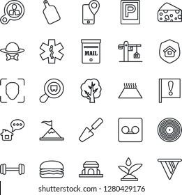 Thin Line Icon Set - parking vector, trowel, tree, ambulance star, barbell, important flag, mobile tracking, search cargo, vinyl, record, face id, mailbox, crane, estate insurance, cafe building