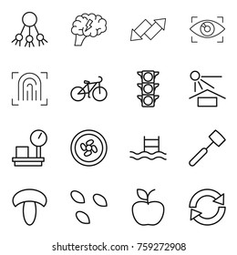 Thin line icon set : share, brain, up down arrow, eye identity, fingerprint, bike, traffic light, sun potection, warehouse scales, cooler fan, pool, meat hammer, mushroom, seeds, apple, reload