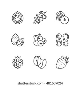 Thin line icons set about nuts & berries. Flat symbols
