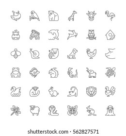 Thin line icons set. Flat symbols about animals