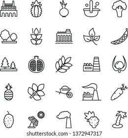 thin line vector icon set - garden trolley vector, beet, carrot, a pineapple, mint, half pomegranate, grape, mulberry, ripe, physalis, peas, broccoli, big solar panel, leaves, manufacture, factory