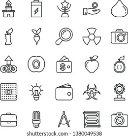 thin line vector icon set - camera vector, heating coil, half apricot, red apple, fig, of guawa, stub, radish, charging battery, mercury light bulb, radiation, processor, scribed compasses, wallet