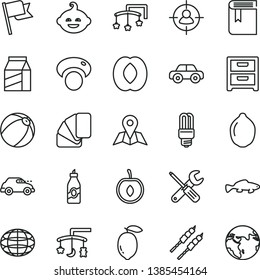 thin line vector icon set - book vector, toys over the cradle, cot, baby bath ball, motor vehicle, funny hairdo, small tools, sample of colour, map, flag, nightstand, package, barbecue, fish, liquor