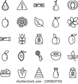 thin line vector icon set - warning vector, stacking toy, construction level, building, lettuce in a plate, peper, apple, mint, rose hip, half of mango, ripe plum, passion fruit, kiwi, sour lime