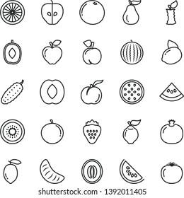 thin line vector icon set - cucumber vector, strawberry, peach, ripe, pomegranate, quince, red apple, tasty, water melon, slice of, delicious plum, half, tangerine, lemon, yellow, kiwi, orange, stub