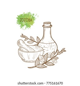 Thirsty. Branch, leaves, fruit. Capacity, flask, mortar, pestle. Set. Sketch. Monochrome