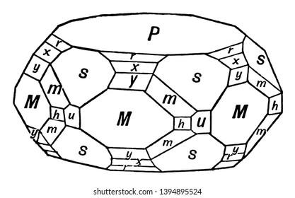 This diagram represents Calcium Phosphate Apatite, vintage line drawing or engraving illustration.