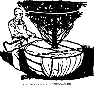 This illustration represents Root Binding which is a method of binding vintage line drawing or engraving illustration.