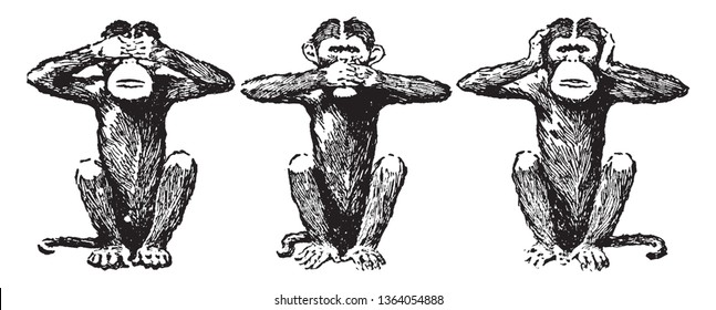 This illustration represents Three Wise Monkeys, vintage line drawing or engraving illustration.