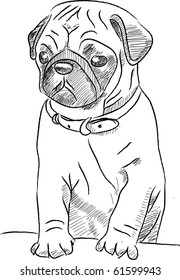 This is a Pug in vector sketch file