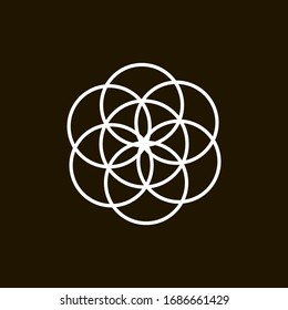This is the stage in the creation of the Flower of Life, a geometric shape that symbolizes the entire universe.