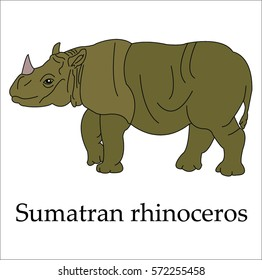 This is a Sumatran rhinoceros and letters on a white background.