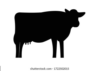 This is vector of Holstein friesian cow.