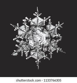 This vector illustration based on macro photo of real snowflake: large stellar dendrite snow crystal with six broad arms, complex internal structure and glossy relief surface.
