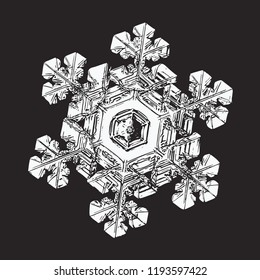 This vector illustration based on macro photo of real snowflake: elegant stellar dendrite snow crystal with complex ornate shape, white relief surface and six short, broad arms with side branches.