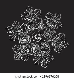 This vector illustration based on macro photo of real snowflake: elegant snow crystal of star plate type with complex inner details, fine hexagonal symmetry and short, ornate arms with side branches.