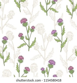 Thistle flower graphic color seamless pattern background sketch illustration vector