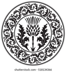 Thistle flower and ornament round leaf thistle. The Symbol Of Scotland, isolated on white, vector illustration