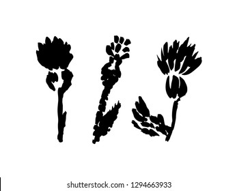 Thistle flowers logo. Set of abstract thistle blossoms. Ink brush drawing. Hand drawn vector illustration.