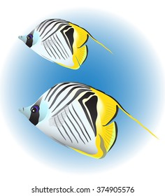 Threadfin butterflyfish, two colorful coral fishes. Vector illustration.