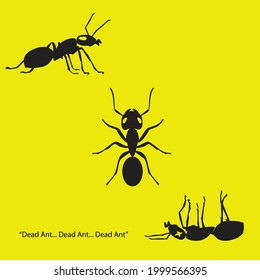 three ants: top view, side view, dead view. illustration vector.