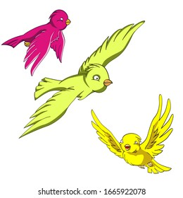 three bird flying in colorful vector drawing for children book, brochure, pamphlet, background