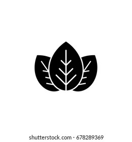 Three black leaves eco icon. isolated on white. Vector illustration.  flat leaves. Leaf organic icon. Black and white