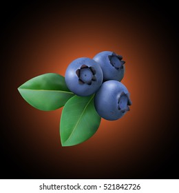 Three Blueberry with leaves. Realistic Vector illustration