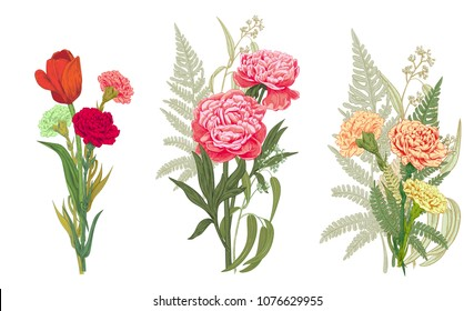 Three bouquets red, pink, yellow flowers and greenery: carnation, peony, tulip, green leaves fern, eucalyptus on white background, hand drawn, colorful engraving vintage sketch style, botanical vector