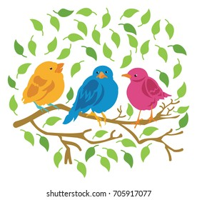 Three Colorful Birds sitting in a tree