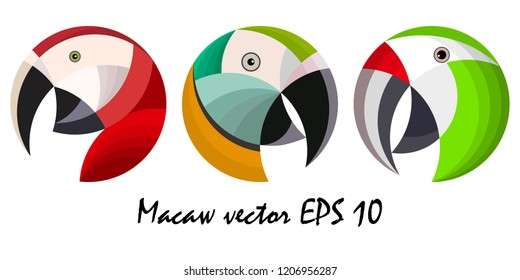 Three colorful macaw parrot`s heads, vector illustration, no background