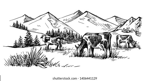 three cows in the mountains drawn by hand