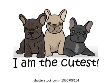 Three cute French Bulldog puppies isolated on a white background. Vector illustration.
