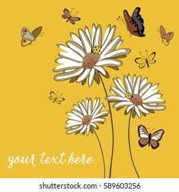 Three daisies with ladybugs and butterflies flying around. Vector illustration on yellow background