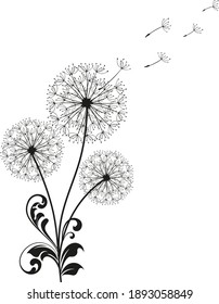 Three Dandelions with flying seeds. Card with abstract flowers, dandelions. The wind blows the seeds of a dandelion. Template for posters, wallpapers, posters.