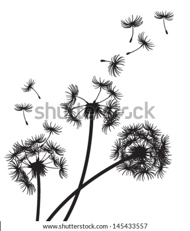 Three Dandelions Seeds Blowing Wind Stock Vector Royalty Free