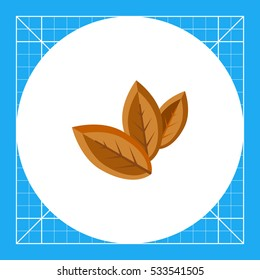 Three Dry Tobacco Leaves Icon