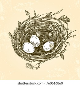 Three eggs in the nest. Vintage style. Vector illustration.