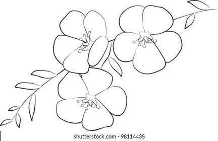 three flowers on branch - vector illustration
