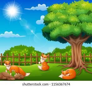 Three fox cartoon on nature scene