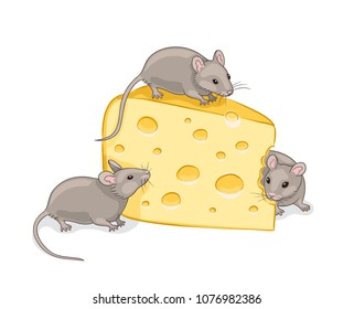 Three grey mice eating a piece of cheese. Vector illustration. EPS8
