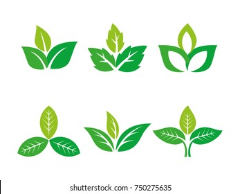 three leafs, plant, tree nature logo design