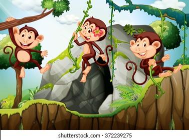 Three monkeys hanging on the branch  illustration