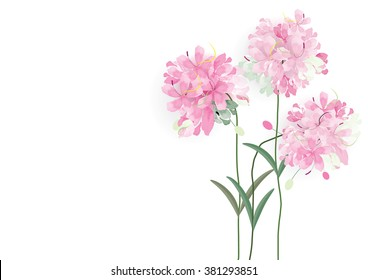 three pink flowers circle bouquet on white background,vector illustration