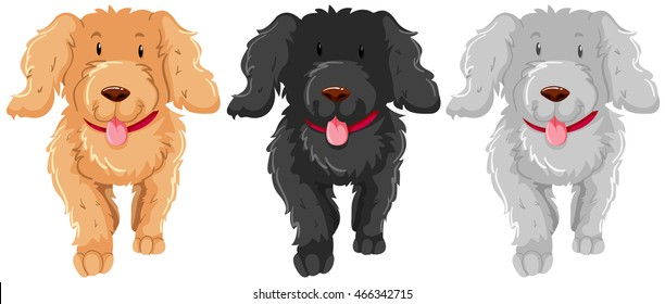 Three poodle dog with happy face illustration