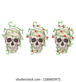 Three skulls and plants