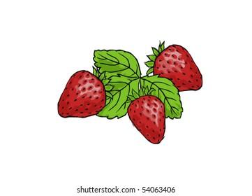 three strawberries on white background